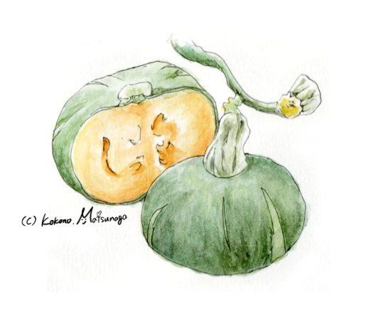 かぼちゃの手描きイラスト
